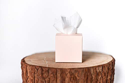 Kleine rosafarbene Boxen mit Loch im Deckel