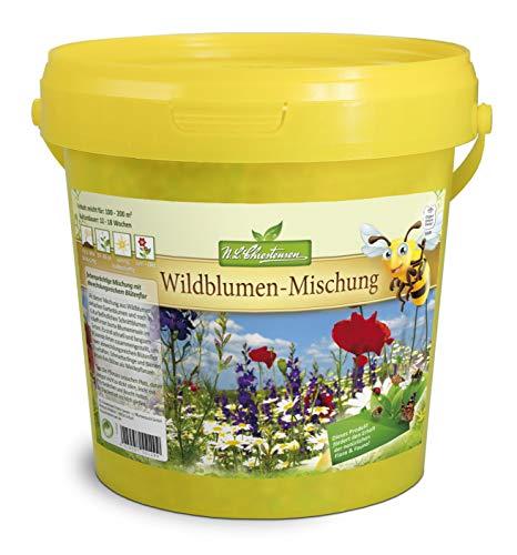 Zauberhafte Wildblumenwiese