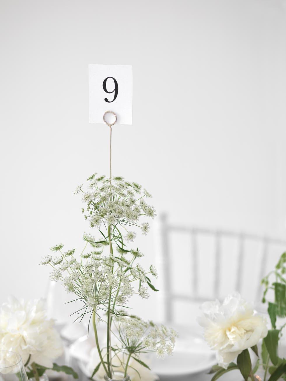 Tischnummern Zahlen