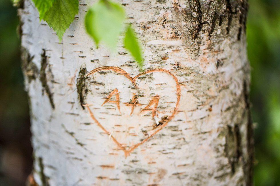 Hochzeitsshoot unter Birken von Tanja Ganzer