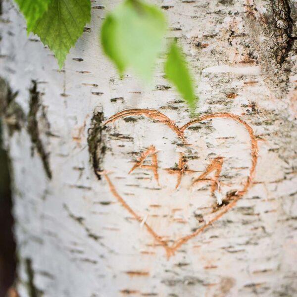 Initialen mit Herz in Birkenrinde
