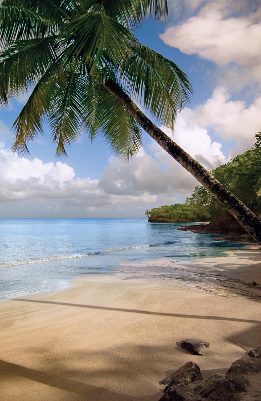 Flitterwochen auf Saint Lucia