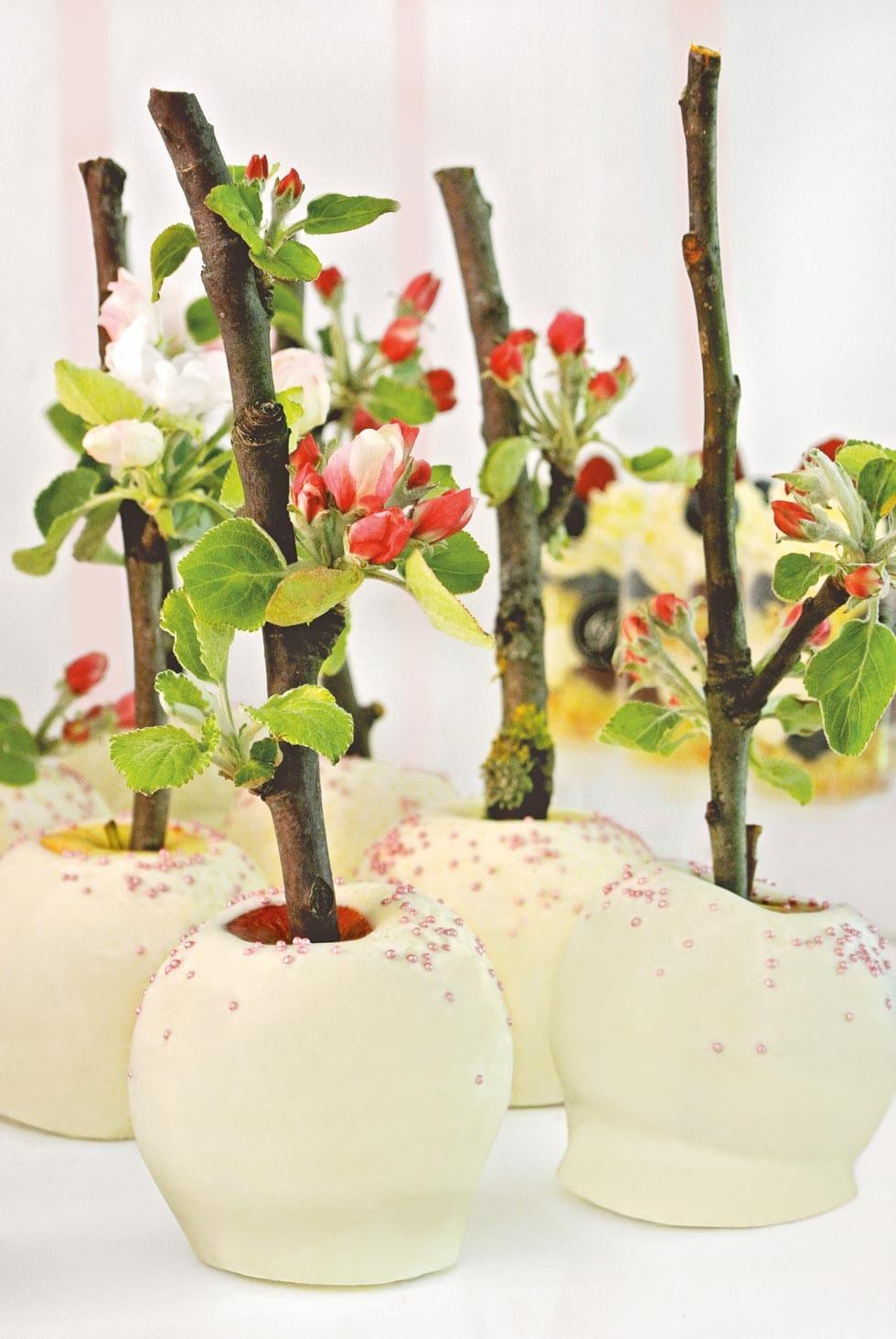 Liebesapfel mit Zweigen