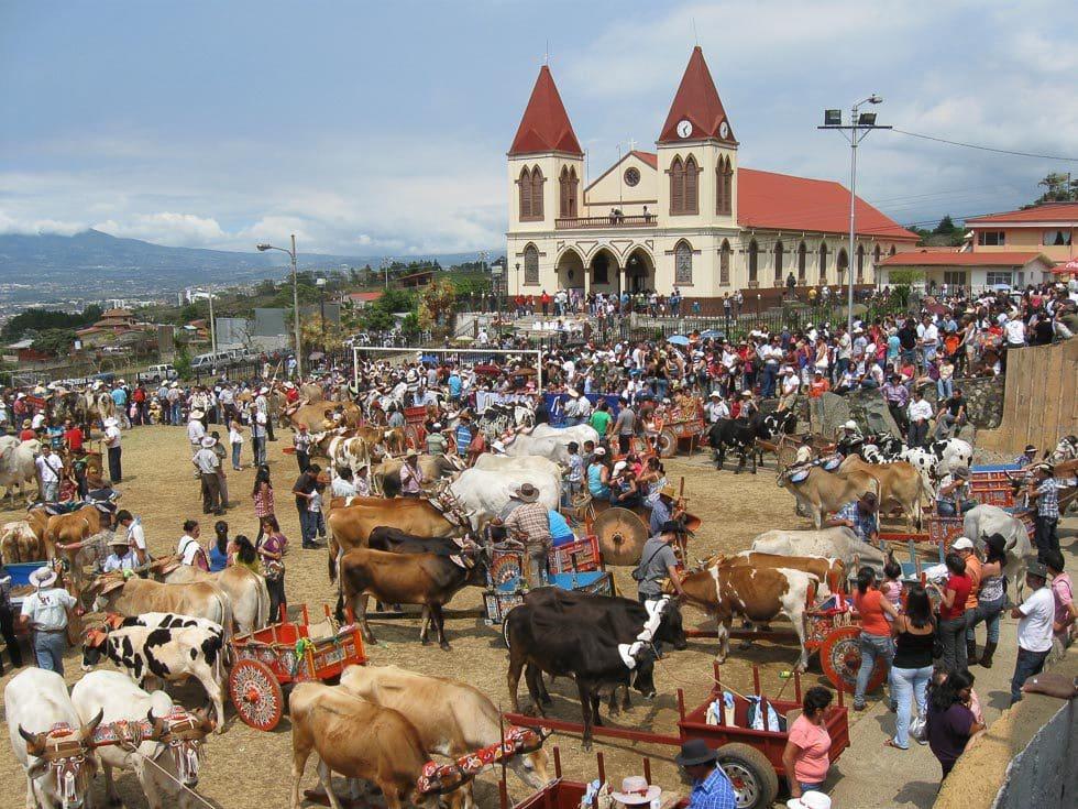 Flitterwochen Costa Rica