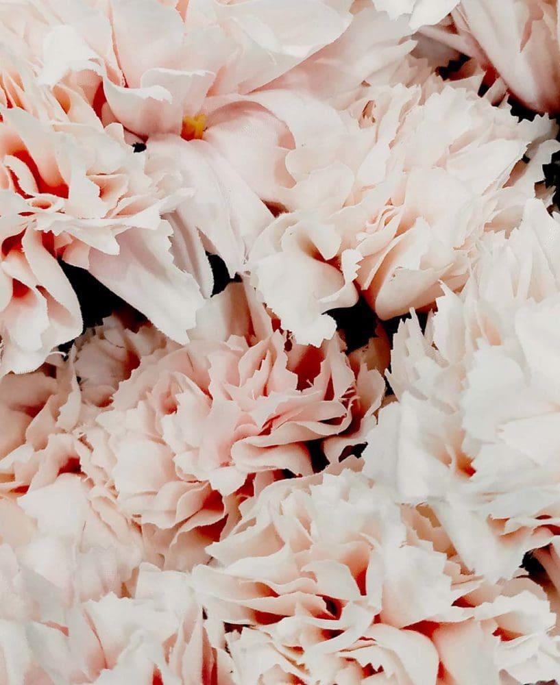Hochzeitsblumen Edelnelke