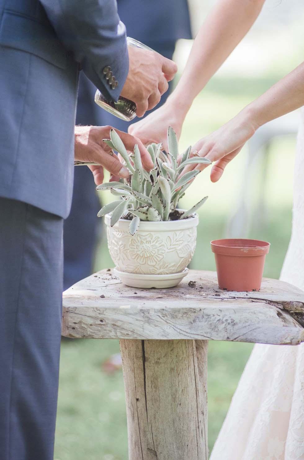 Pflanzritual Hochzeit
