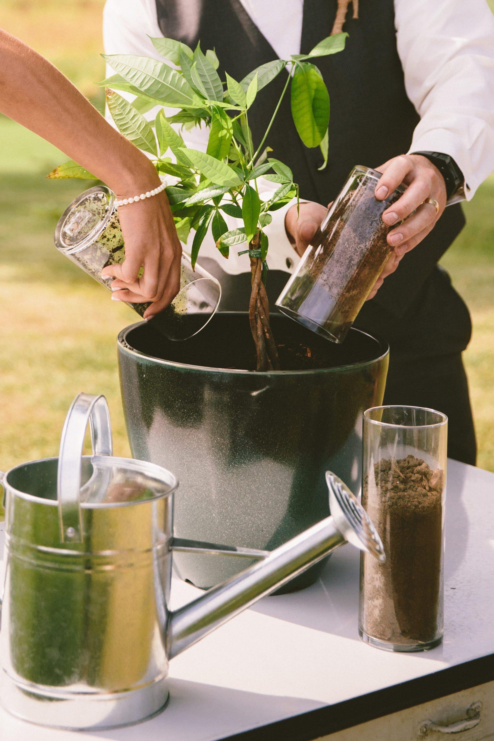 Pflanzritual Hochzeit Ritual