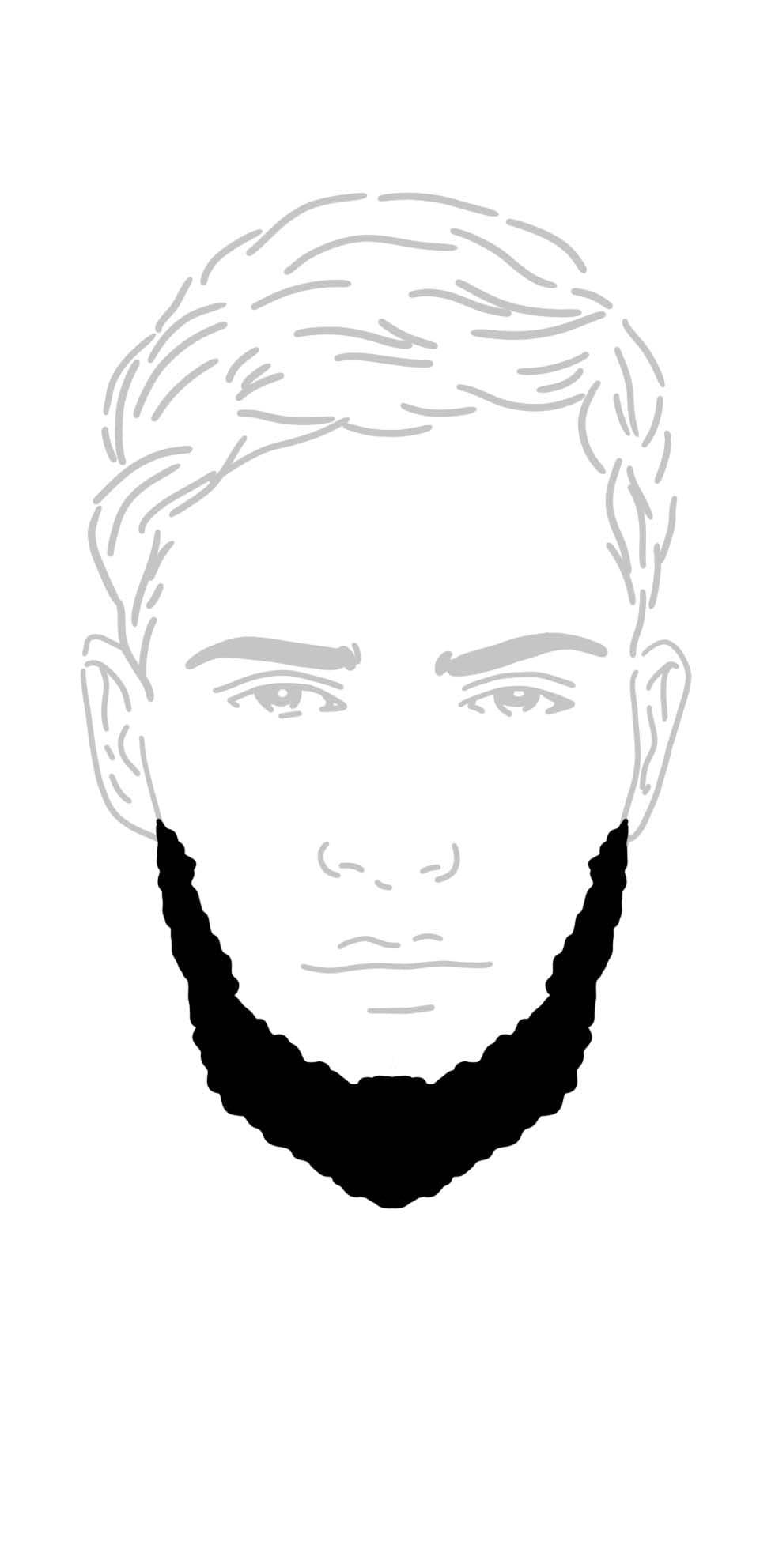 Schifferskrause Bart
